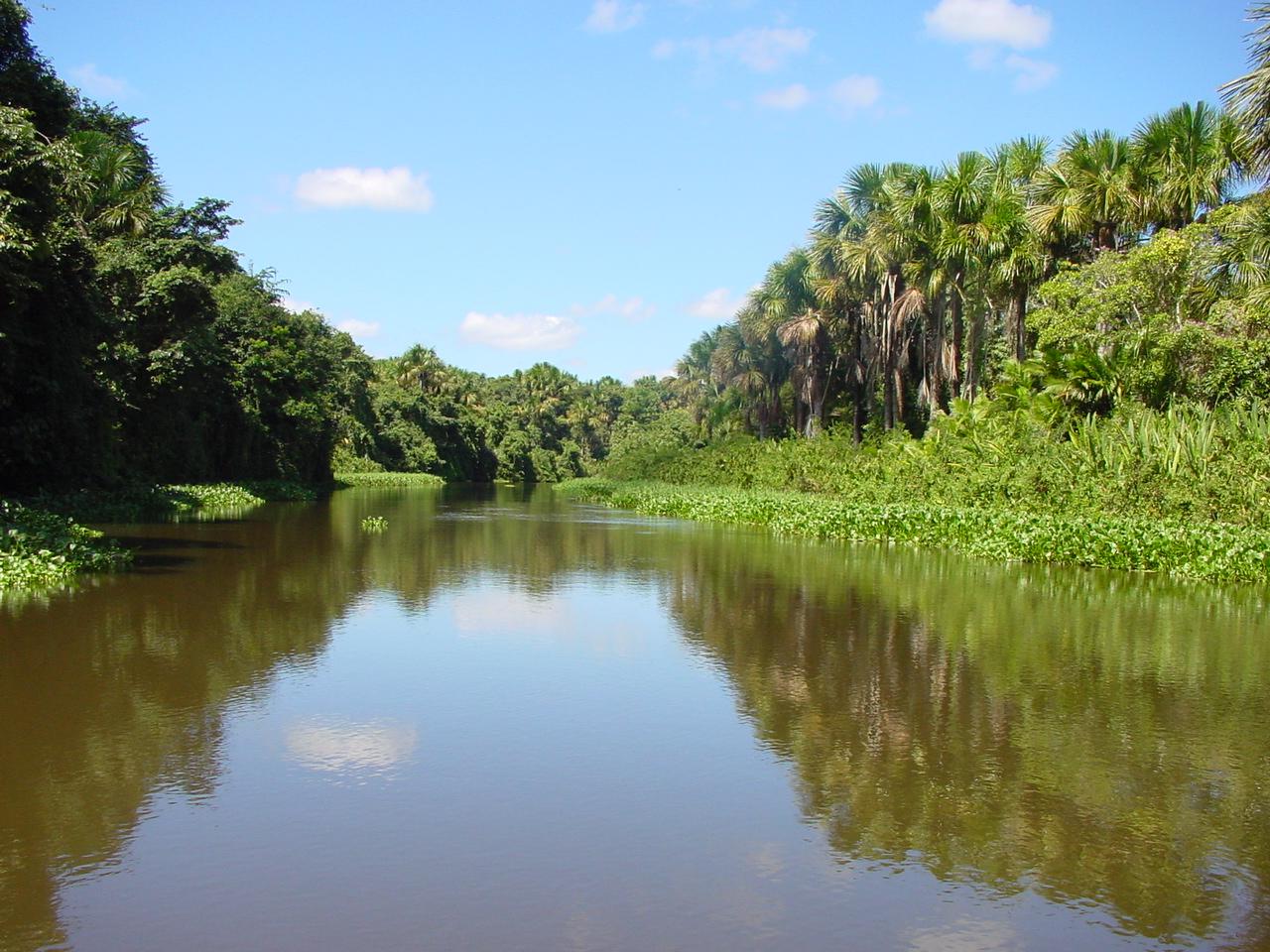 Orinoco River Orinoco Delta  ...