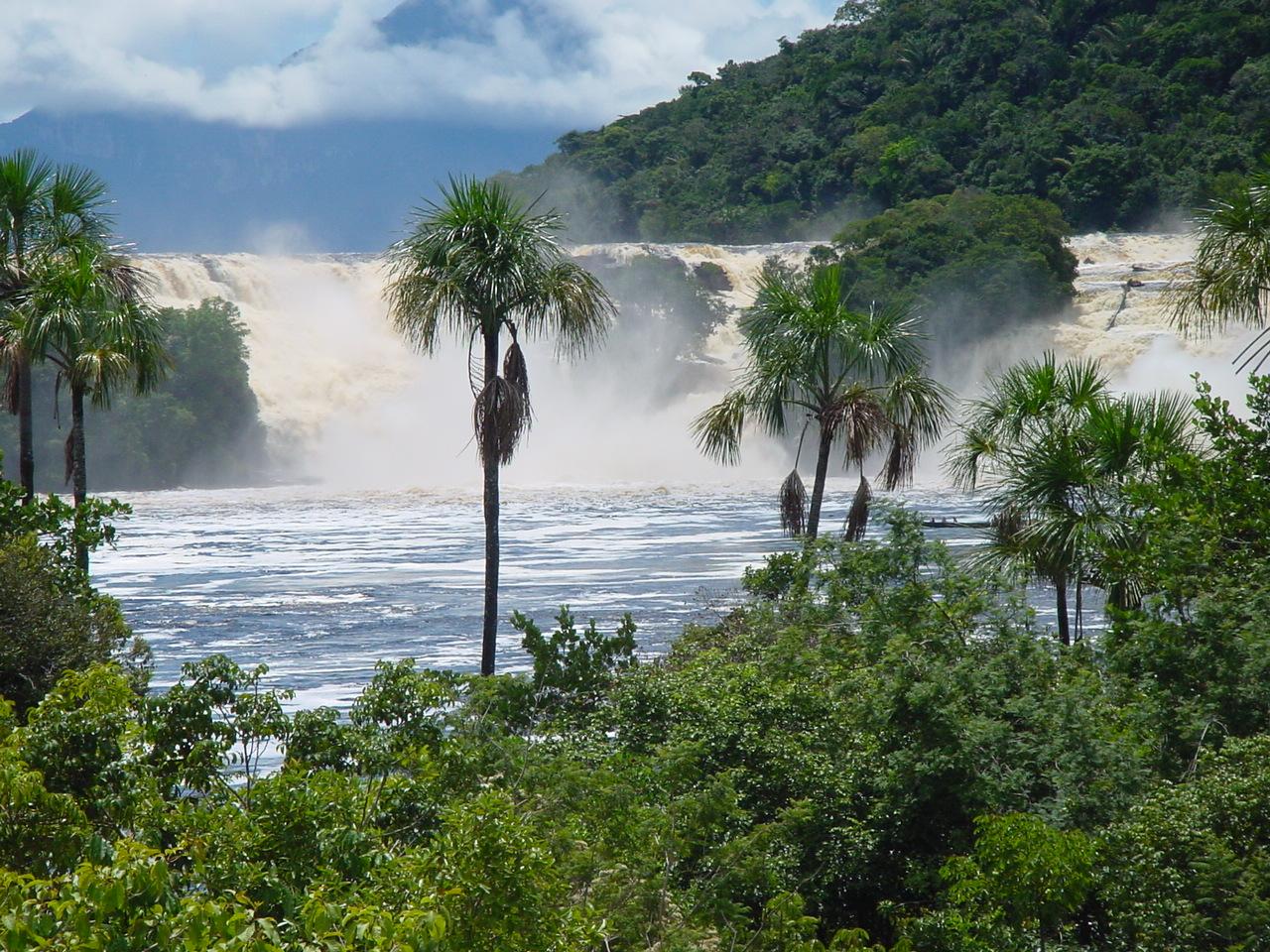 Vom Amazonas zu den Tafelbergen   cacao travel